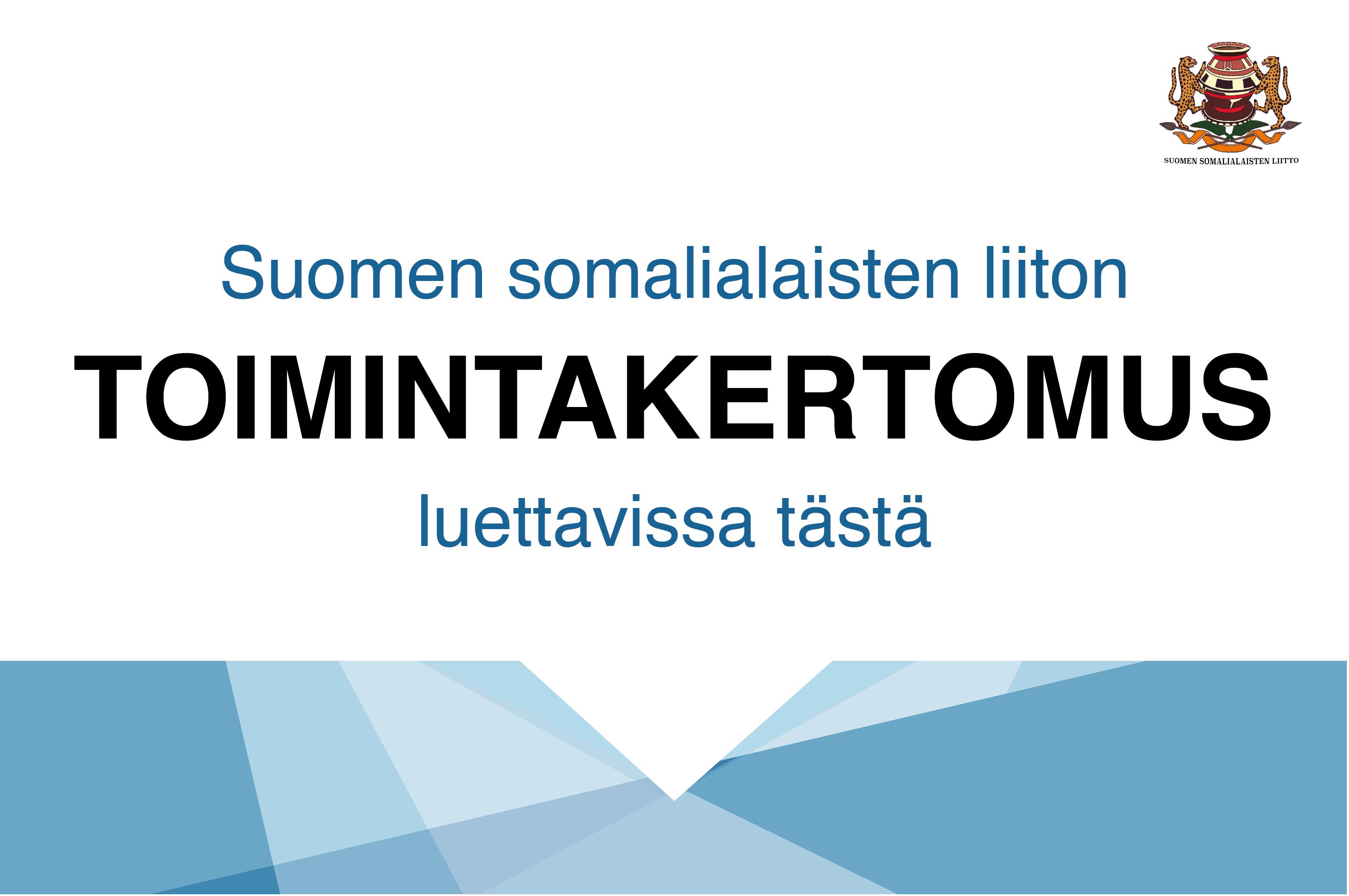 Toimintakertomus 2017
